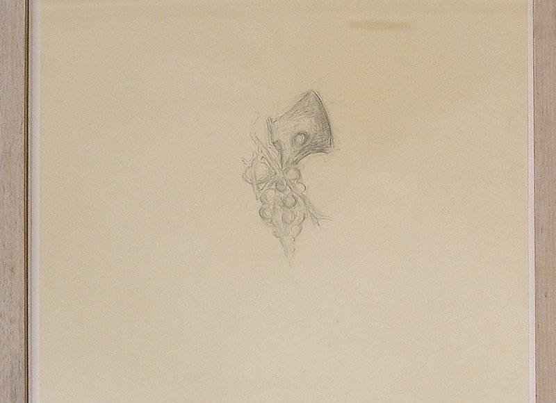 La volpe e l'uva, 2003, grafite su carta, cm 47x35,5