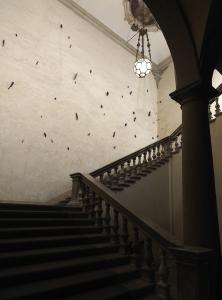 Installazione a Palazzo Pepoli Campogrande