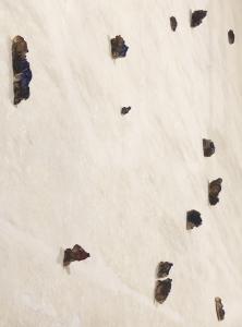 dettaglio installazione a Palazzo Pepoli Campogrande