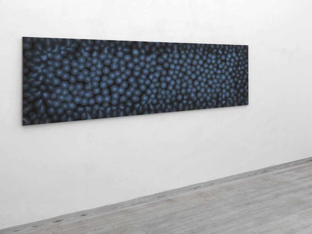 Matteo-Montani-06.10_0023