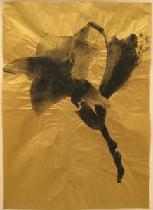Gianni Moretti, Fiori, 2011, xerografia su carta dorata, cm 70x50