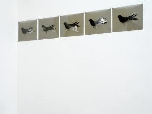 Gianni Moretti, Cinque esercizi di aderenza (la rondine), 2011, monotipo di inchiostro su pvc, cinque elementi di cm 29,5x42 cad.