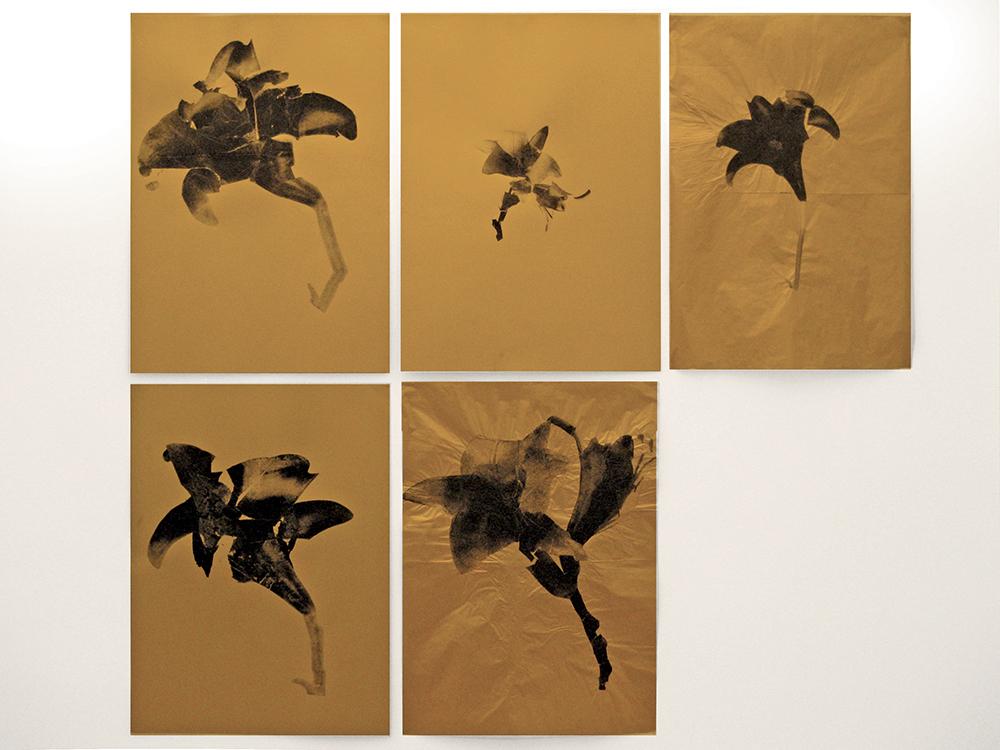 Gianni Moretti, Fiori, 2011, xerografia su carta dorata, cm 70x50 cad.