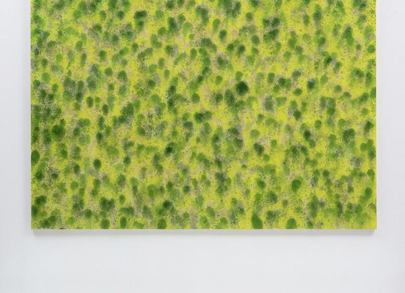 Titolo concettuale per un quadro dipinto a Casso, 2018, anilina su tela, cm 200x250
