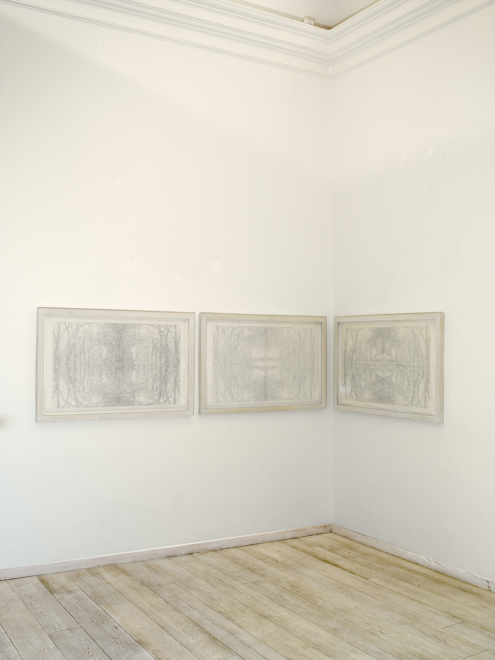 sala III - Boschi, 2003-2005, matita su carta, cm 70x120