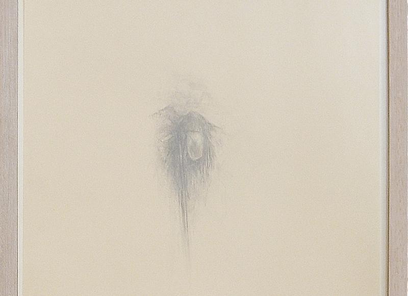 Paesaggio e fiore, 2005, grafite su carta, cm 47x35,5