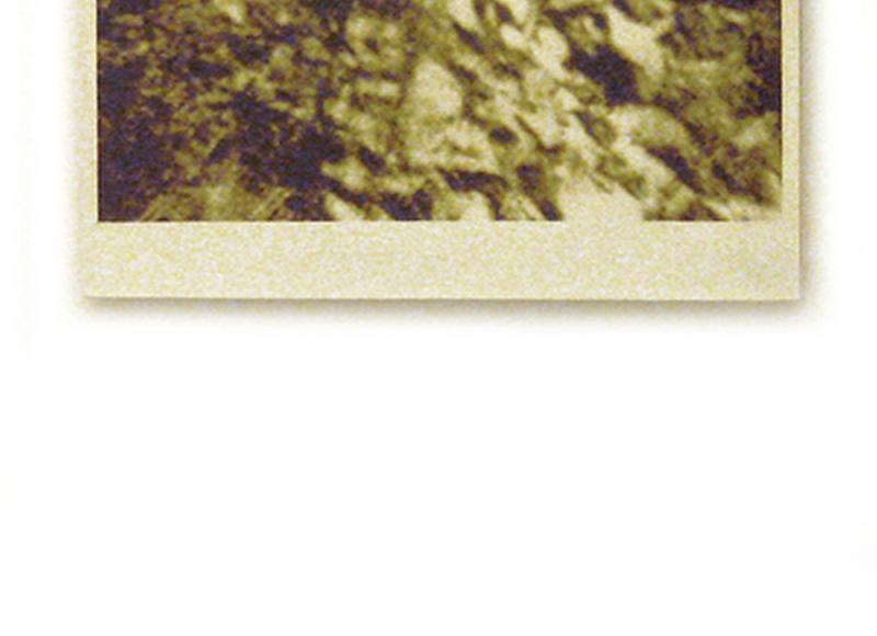 Sovrapposizioni culturali, 1977, stampa originale e cocci, cm 70x50