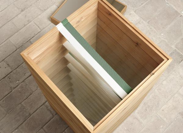 Riverbero, 2007, legno, nylon, vetro, acciaio e sangue in provetta, cm 140x60x60