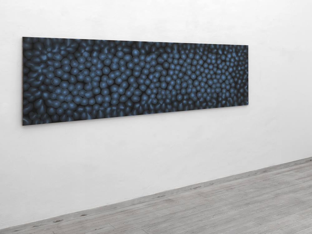 A cielo aperto, 2010, olio su carta abrasiva montato su tela, cm 94x306