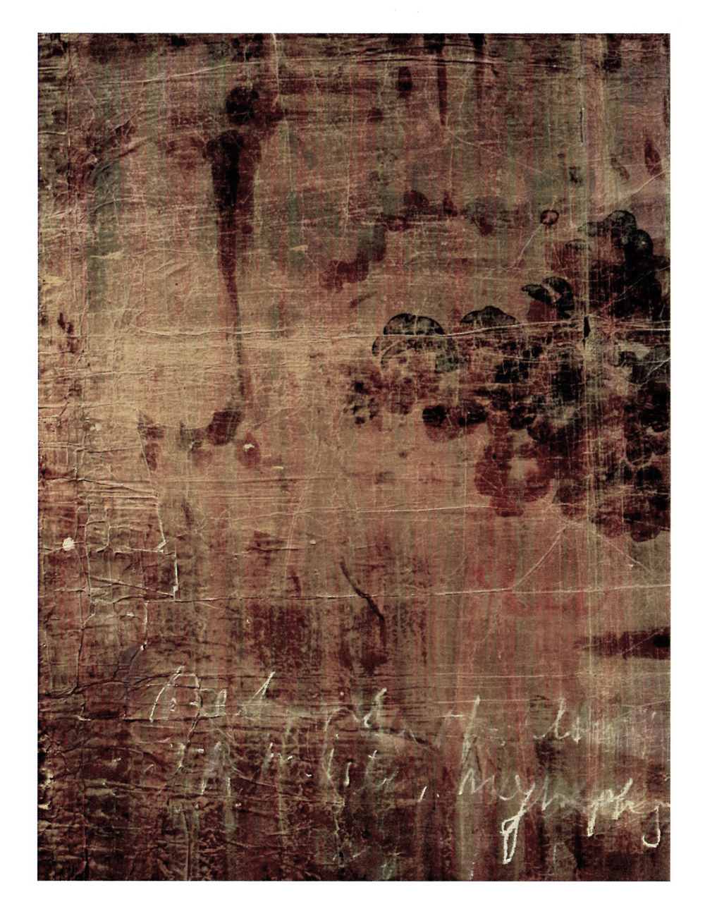 Luca Caccioni, Behind the cloack of mist. nymphs, 2016, pigmenti, abrasione su carta e tela su dibond, cm 108x80,5